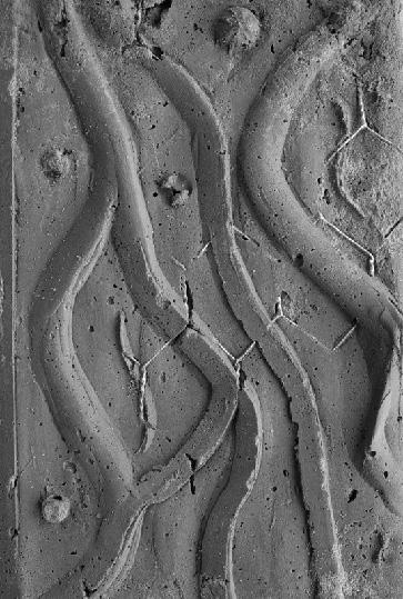 Betonrelief (Bild: Philipp Esch, Hansjörg Gadient, spacespot)