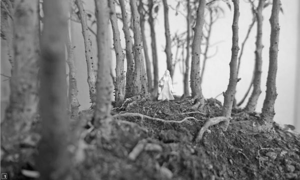 """Im Wald (Bonsai-Hain) (Immagine: Lehrmittel """"Bauten, Städte, Landschaften"""")"""