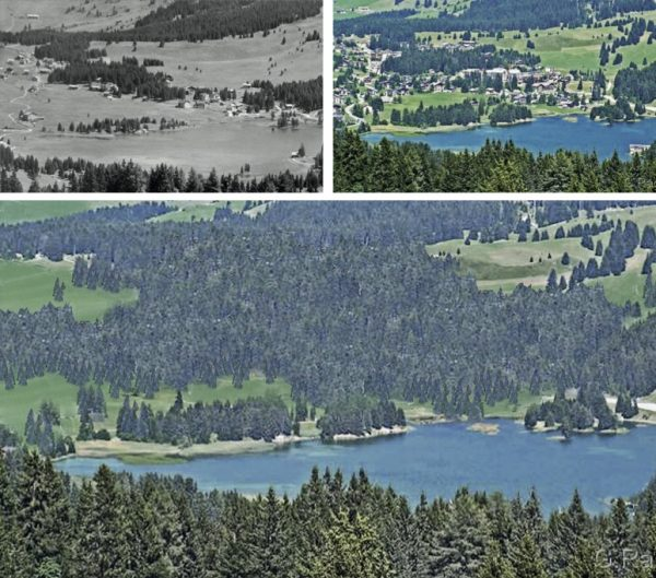 "Valbella 1910 – 2010 – 2110 (Immagine: Lehrmittel ""Bauten, Städte,Landschaften"")"